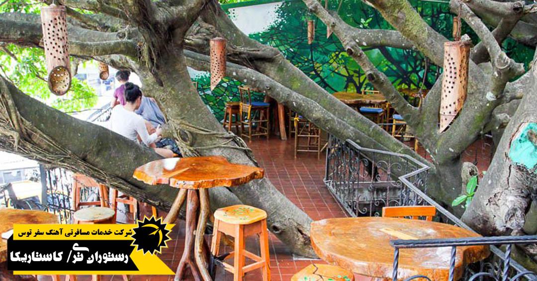 رستوران تری هاوس کاستاریکا