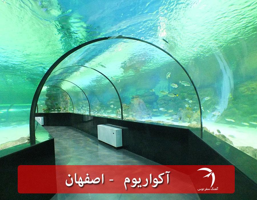 آکواریوم اصفهان