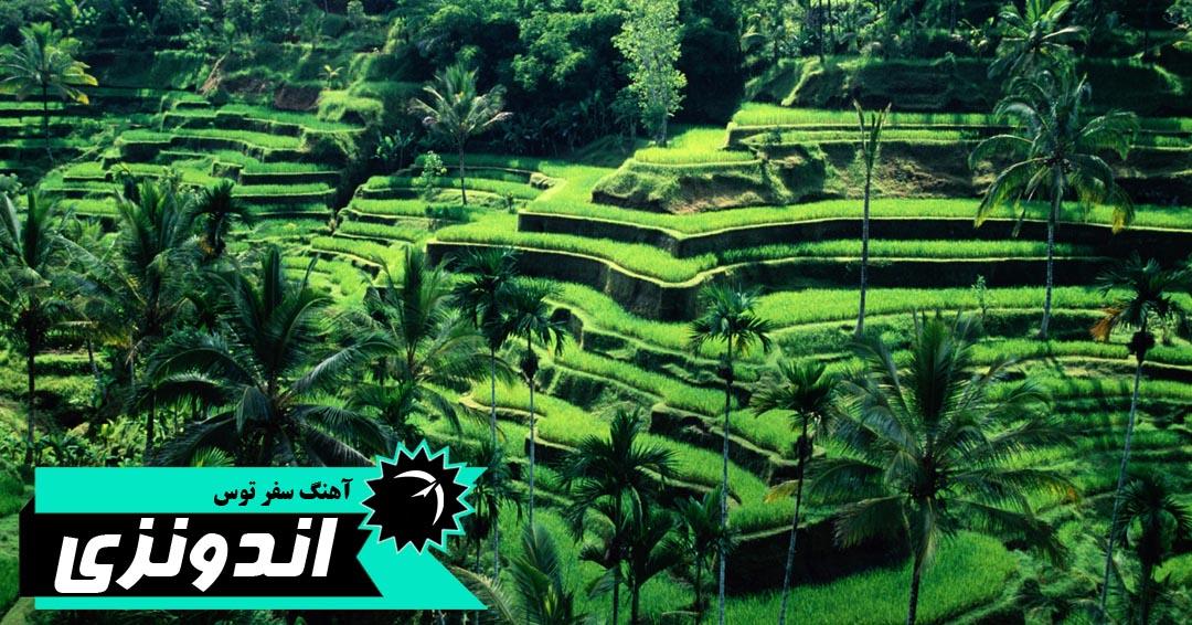 بالی، محبوب ترین جزیره اندونزی