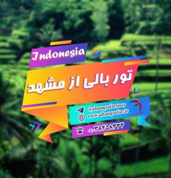 تور بالی از مشهد